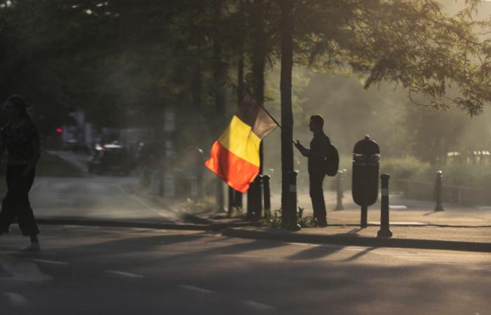 Бельгійський демократичний експеримент