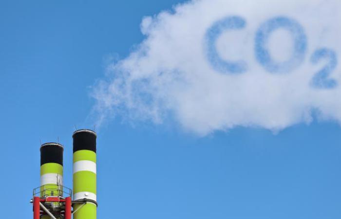 Перехід на віддалену роботу допоможе стабілізувати викиди СО2