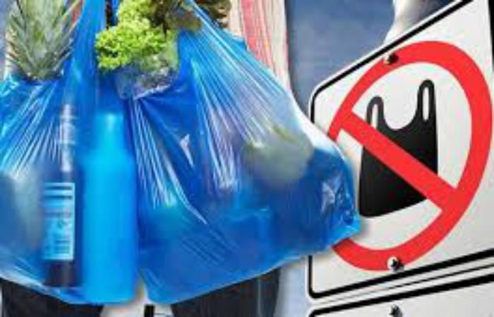 Німеччина заборонила пластикові пакети з 2022 року