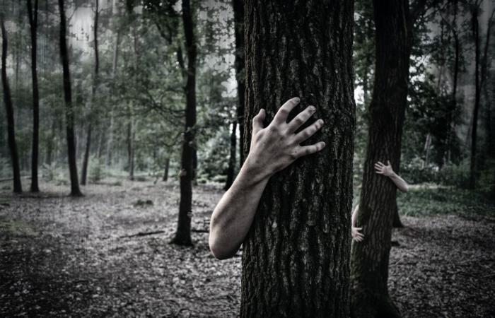 49% платних передплатників цифрових видань - зомбі