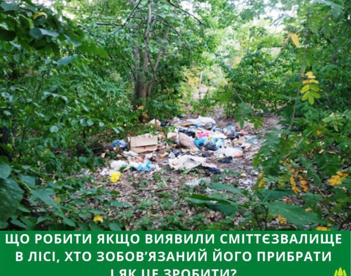 Що робити якщо виявили сміттєзвалище в лісі, хто зобов'язаний його прибрати і як це зробити?